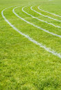 Grass Track Royalty Free Stock Photos