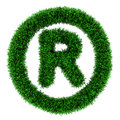 Grass trademark symbol Royalty Free Stock Photos