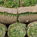 Grass turf in rolls ready for landscaping or gardening Royalty Free Stock Images