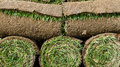 Grass turf in rolls ready to be used for gardening or landscaping Royalty Free Stock Photo