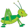 Grasshopper (vector clip-art) Stock Photos