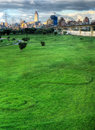 Grassland and big city Stock Photo