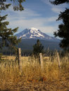 Grassland fence countryside mount adams mountain farmland landsc mt looms over lush ranch land in washington state Stock Photography