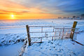 Grassland and fence in winter Royalty Free Stock Photo