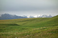 Grassland with snow mountains kalajun in summer located in xinjiang china Royalty Free Stock Image