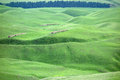 Grassland in summer located xinjiang china Stock Photo