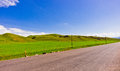 Grasslands road the goes into the grassland under a sunny day Royalty Free Stock Image