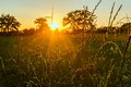 Grassy farley the sun setting over a field in the the english countryside Royalty Free Stock Photography