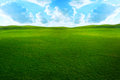 Grassy field Stock Photos