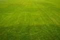 Grassy Field Royalty Free Stock Photo