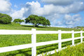 Grassy field with white fence Royalty Free Stock Photo
