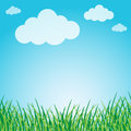 Grassy green field and blue sky Stock Photography
