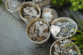 Gravel inside a pail in a house of la spezia Royalty Free Stock Photos