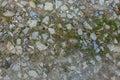 Gravel lane ground texture Royalty Free Stock Photo