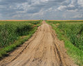Gravel road through flat prairie. Royalty Free Stock Photo