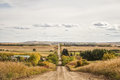 A gravel road through hilly countryside lined by farmland and trees Royalty Free Stock Photography
