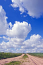 Gravel rural road summer sky clouds landscape Royalty Free Stock Image