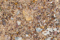 Gravel with sand as background Royalty Free Stock Photo
