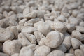 Gravel stone in the cluster Stock Images
