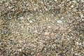Gravel texture close up of as background Royalty Free Stock Photo