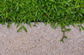 Gravel Texture And Grass For B...