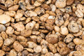 Gravel texture, natural background Royalty Free Stock Photo