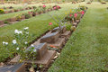 Gravestone Royalty Free Stock Photo