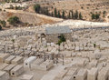 Gravestones of an ancient Jewish cemetery on the Eleonsky mountain. Jerusalem, Israel Royalty Free Stock Photo