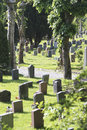 Graveyard with headstones facing away from camera Royalty Free Stock Image