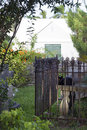 Graveyard st peters anglican church st george bermuda feral black cat in and historic cemetery at in is the oldest Stock Images