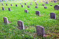 Graveyard tomb stones and grass in daylight Stock Photo