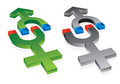Gravitation of male and female symbols Stock Photos
