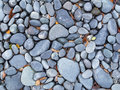 Gray blue river pebbles background with dried leaves Royalty Free Stock Photo