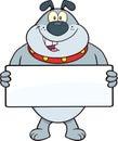 Gray bulldog cartoon mascot character que sostiene una bandera Fotos de archivo libres de regalías