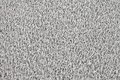 Gray carpet texture Royalty Free Stock Photo