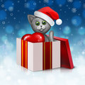 Gray cat in the gift box Royalty Free Stock Photos