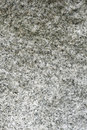 Gray cobblestone - detail - granite Royalty Free Stock Photo