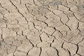 Gray cracked dehydrated land