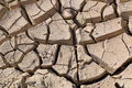 Gray cracked  ground closeup - soil detail Royalty Free Stock Photo