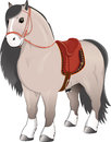 Gray horse with saddle.
