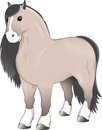 Gray horse stands
