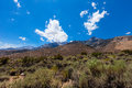 Gray mountain area inyo national forest california this provides another route to mount whitney Stock Images