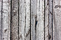 Gray old wood texture of fence s boards Royalty Free Stock Photography