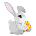 The gray rabbit holding a yellow and red colored Easter egg isolated on white.