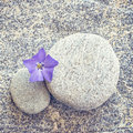 Gray stone and pebble zen background Royalty Free Stock Photo