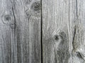 Gray wooden texture old background Royalty Free Stock Images