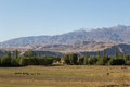 Grazing sheep and beautiful landscape in kyrgyzstan a herd of close to toktogul Royalty Free Stock Photo