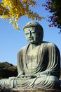 The Great Amida Buddha of Kamakura (Daibutsu) in the Kotoku-in Temple Royalty Free Stock Photo
