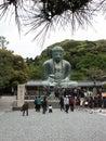 The Great Buddha Stock Photos