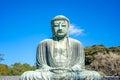 The Great Buddha or Daibutsu in Kamakura, Japan Royalty Free Stock Photo